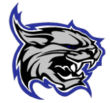 Dodge County Boys High School Hockey Logo